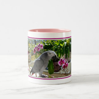 African Grey Parrot with Orchids Two-Tone Coffee Mug