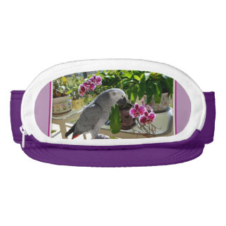 African Grey Parrot with Orchids Visor