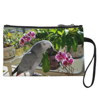 African Grey Parrot with Orchids Wristlet