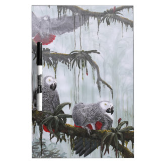 African Grey Parrots flying free Dry-Erase Boards