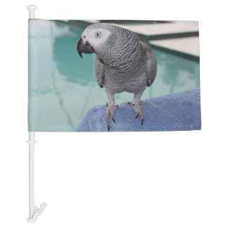 African Grey Pool Party Car Flag
