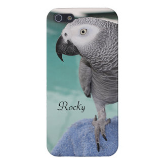 African Grey Pool Party Case For iPhone SE/5/5s