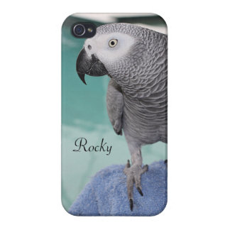 African Grey Pool Party Covers For iPhone 4
