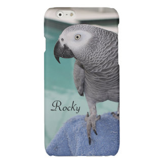 African Grey Pool Party Glossy iPhone 6 Case