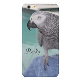 African Grey Pool Party Glossy iPhone 6 Plus Case