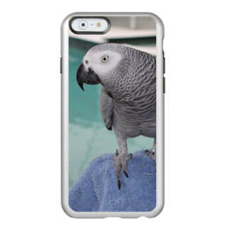 African Grey Pool Party Incipio Feather Shine iPhone 6 Case