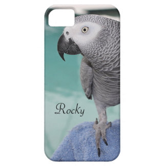 African Grey Pool Party iPhone SE/5/5s Case