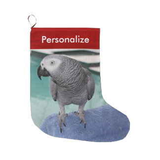 African Grey Pool Party Large Christmas Stocking