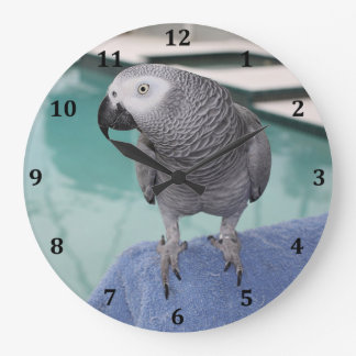 African Grey Pool Party Large Clock
