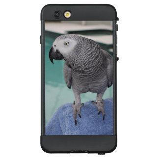 African Grey Pool Party LifeProof NÜÜD iPhone 6 Plus Case