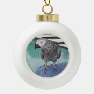 African Grey Pool Party Ornaments