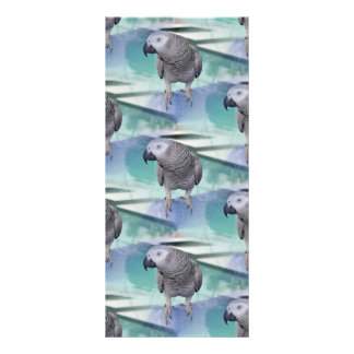 African Grey Pool Party Rack Card
