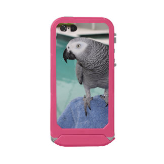 African Grey Pool Party Waterproof Case For iPhone SE/5/5s