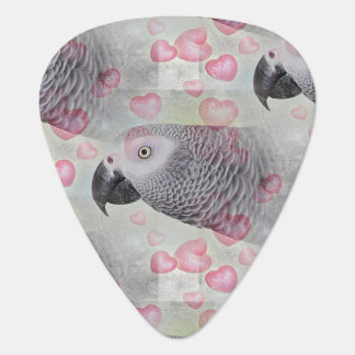 African Grey Puffy Hearts Pick