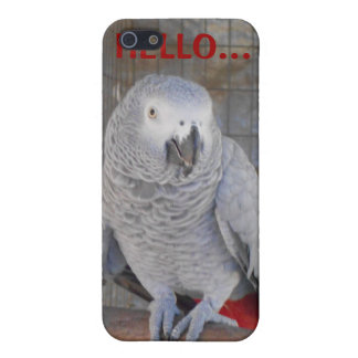 """African Grey """"Rudy"""" Cases For iPhone 5"""