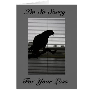 African Grey Silhouette Sympathy Greeting Card