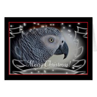 African Grey Snowy Christmas Greeting Card