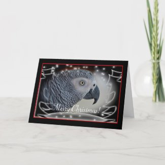 African Grey Snowy Christmas Holiday Card