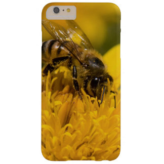 African Honey Bee With Pollen Sacs Feeding Barely There iPhone 6 Plus Case