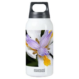 African iris flower in bloom insulated water bottle
