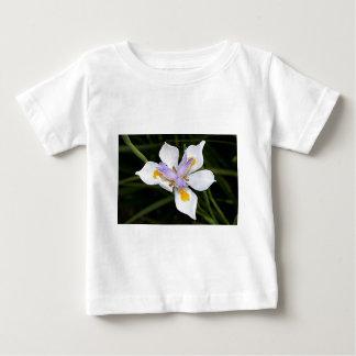 African iris flower in bloom tshirts