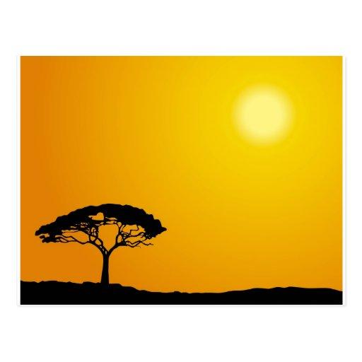 African Landscape Postcard