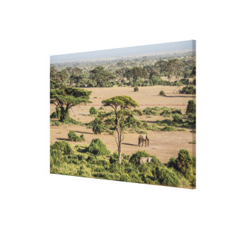 African Landscape with Elephant Canvas Print