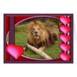 african-lion-00005-65x45 tarjeta de felicitación