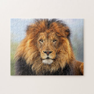 African Lion 1 Jigsaw Puzzle