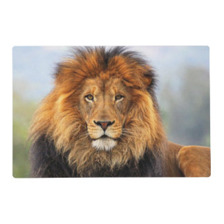 African Lion 1 Placemat
