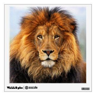 African Lion 1 Wall Sticker