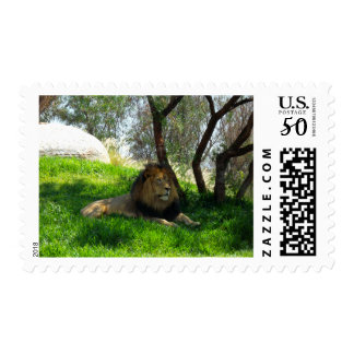 African Lion 2 Postage