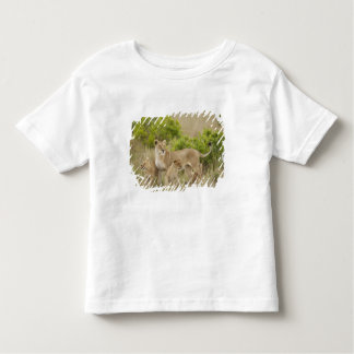 African Lion adult female with cubs, alert Shirt