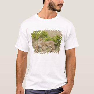 African Lion adult female with cubs, alert T-Shirt