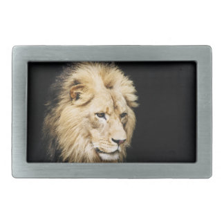 African Lion belt buckle rectangle