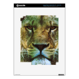 African Lion Big Cat Wildlife-lovers Art Decal For iPad 3