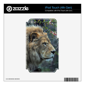 African Lion Big Cat Wildlife-lovers Art Skin For iPod Touch 4G