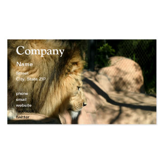 African Lion Business Card