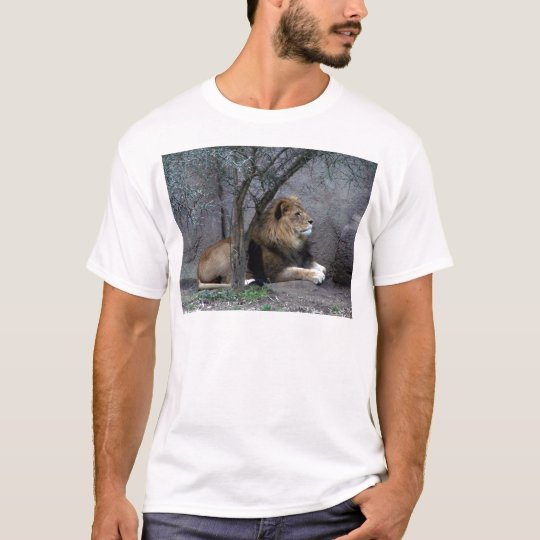african lion by tree T-Shirt