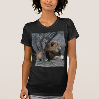 african lion by tree t-shirts