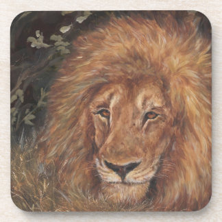 African lion coasters