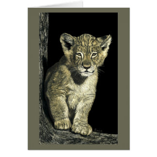 "African Lion Cub Card - ""Little King"""