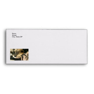 African Lion Envelope