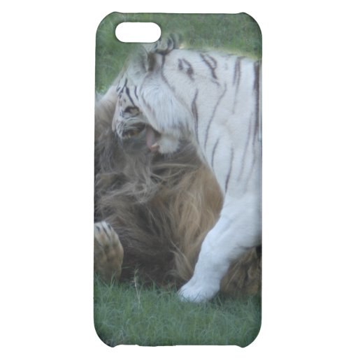 African Lion i iPhone 5C Cases