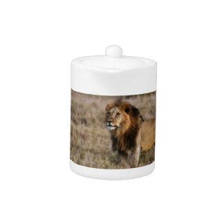 African Lion in Grass Teapot