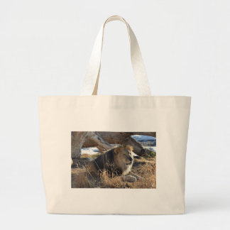 African Lion Large Tote Bag