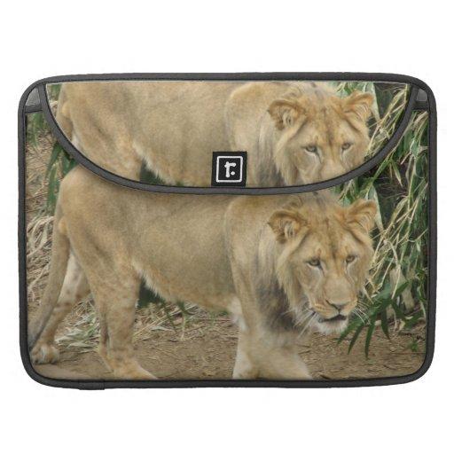 African Lion MacBook Pro Sleeve