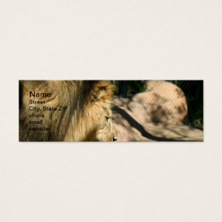 African Lion Mini Business Card