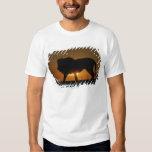 African lion (Panthera leo) against sunset, T Shirt