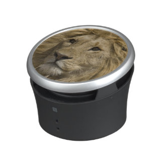African Lion, Panthera leo, Portrait of a Bluetooth Speaker